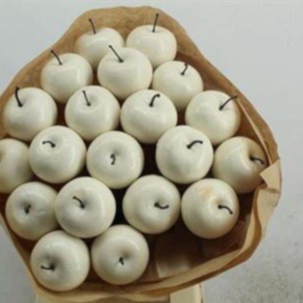 Apple Dried White x 20