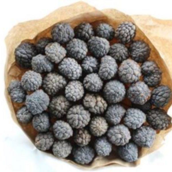 Dried Fruit x 40